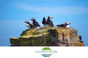 Enjoy a Full Day Guided Walking Tour of Rathlin Island with Milliken Tours Ireland for 65 pp