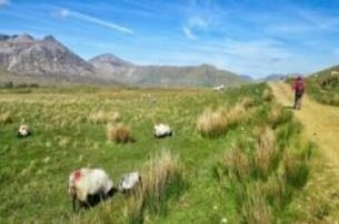 Stretch your legs with a 7Day SelfGuided Walking Holiday in Connemara with Hillwalk Tours for 819 pe