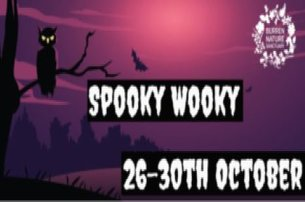 Enjoy some Spooky Wooky time at the Burren Nature Sanctuary Co Galway as part of the day ticket from
