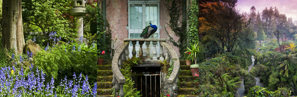 Gardens of Ireland's Ancient East