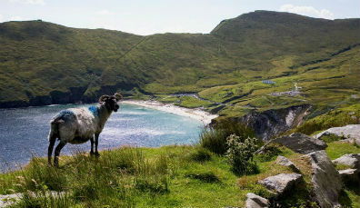 Wild Atlantic Way trip ideas