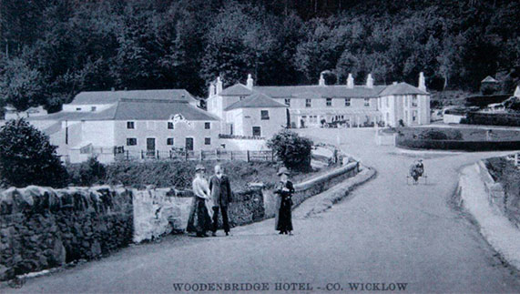 7. Woodenbridge Hotel, County Wicklow
