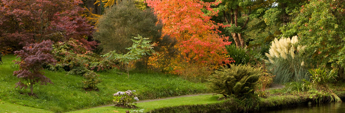 Mount Usher Gardens, County Wicklow
