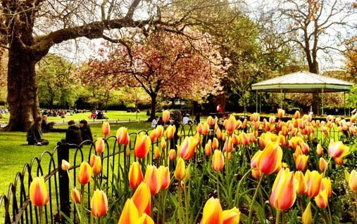 St Stephen's Green in Dublin