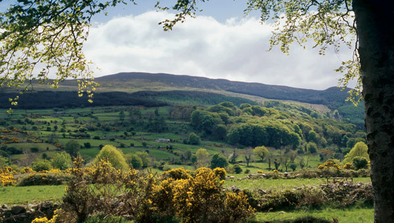 Slieve Gullion, County Armagh