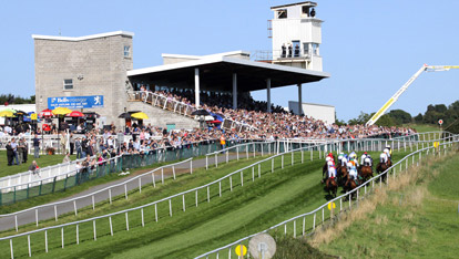 Downpatrick race course, County Down