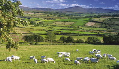 Northern Ireland: Destination delicious