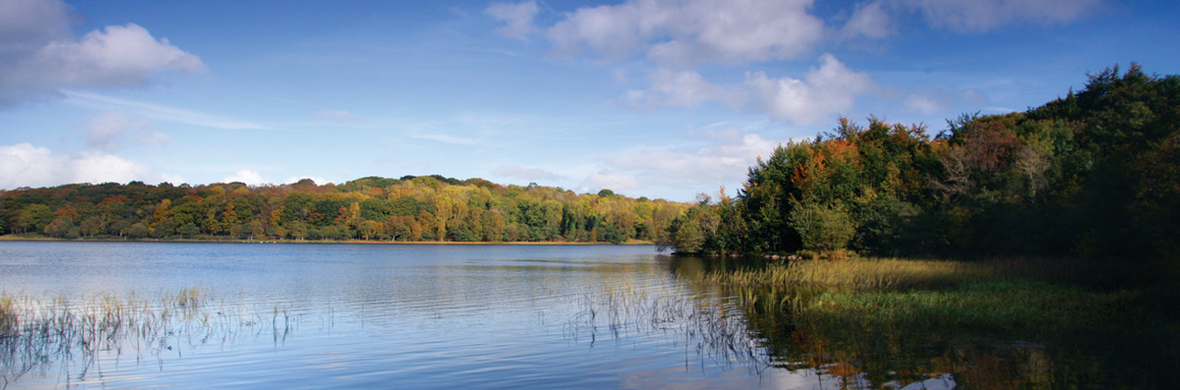 Lower Lough Erne, comté de Fermanagh