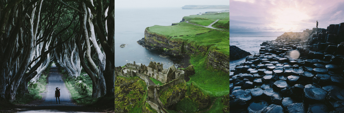 The Dark Hedges, Dunluce Castle and the Giant's Causeway