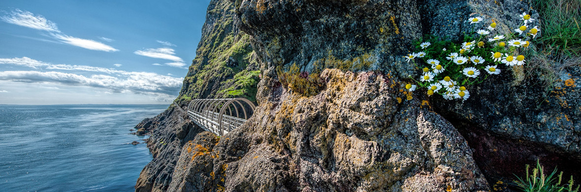 The Gobbins Cliff Path, County Antrim