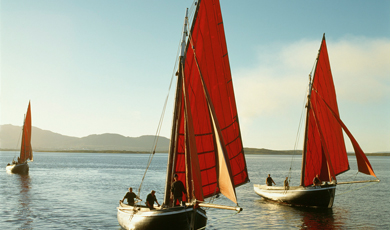 Great Ireland boat trips